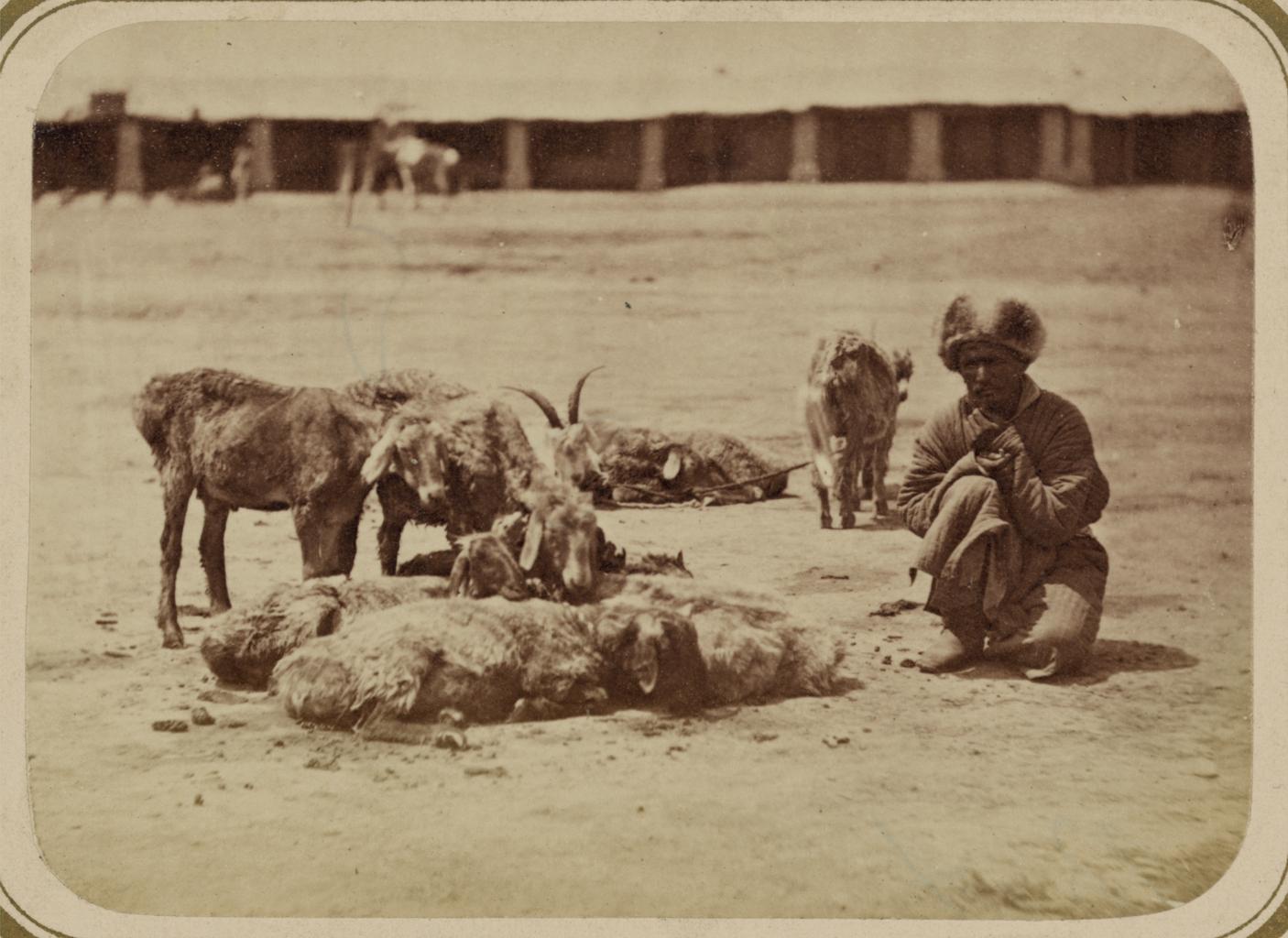 Базарные типы. Продавец овец