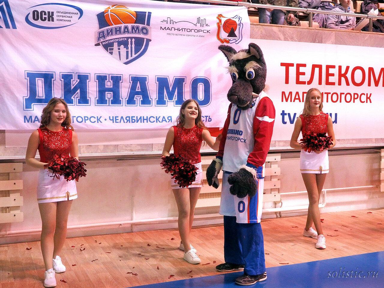 58 Динамо Магнитогорск - Нефтехимик 25.01.2018