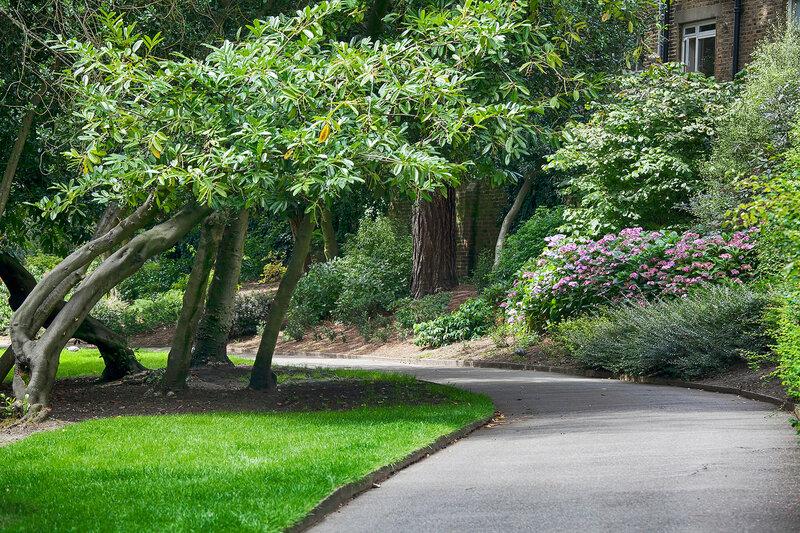 hampstead heath park