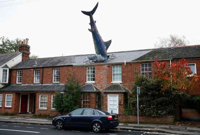 A model of a shark is seen in the roof of a house in Oxford, Britain. Photo by Eddie Keogh/Reuters.