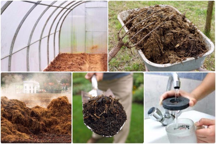 Предпосевная обработка почвы для парников и теплиц