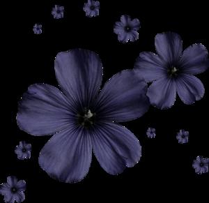 россыпи цветов