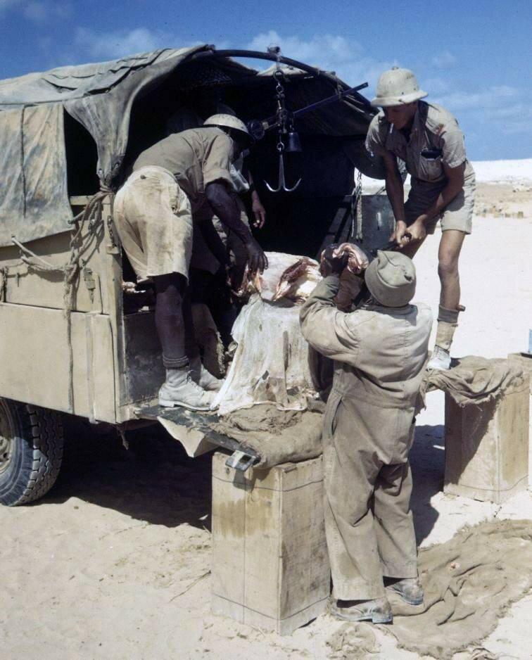 El Alamein - 1942 - Bob Landry - LIFE