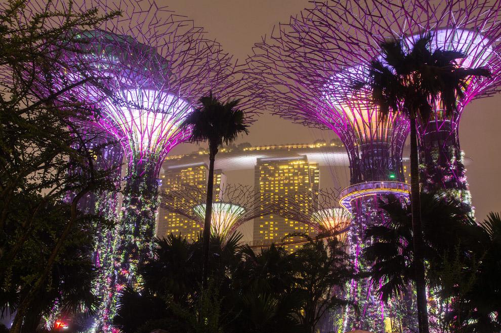 Сингапур. Футуристические Сады в заливе