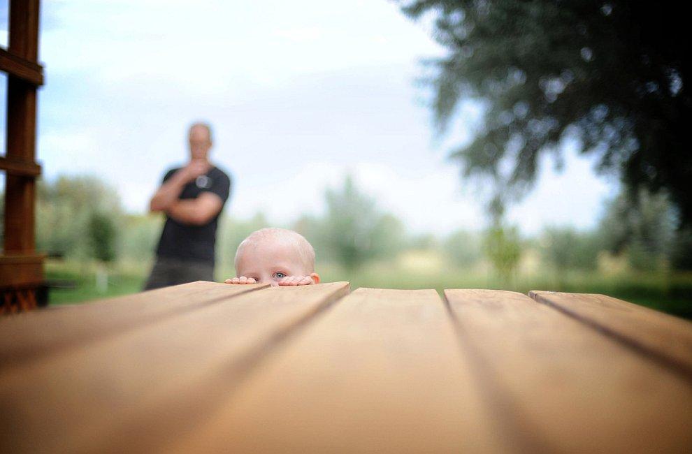 5. Колоски ячменя на ветру. (Фото © Jim Cottingham/National Geographic Photo Contest):
