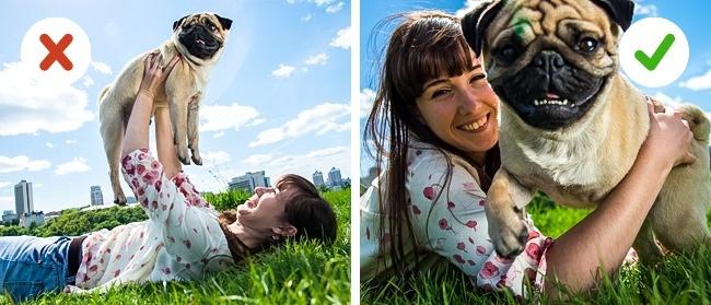 10ошибок, которые совершают все владельцы домашних животных (13 фото)