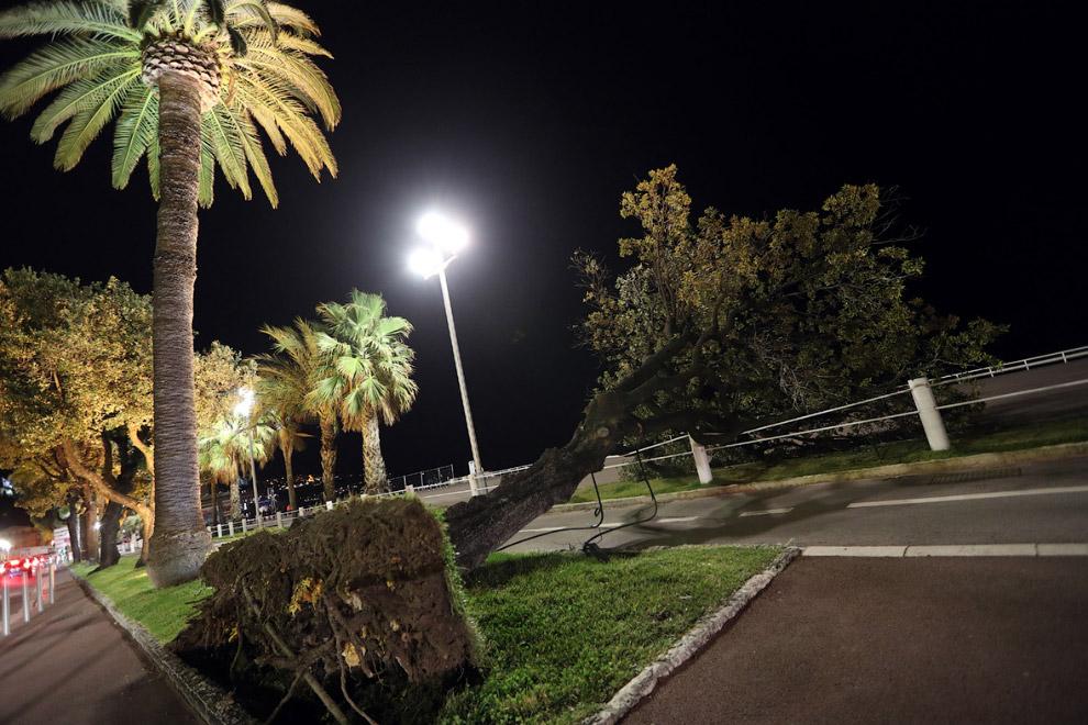 6. В Марселе, на юге Франции. (Фото Boris Horvat):  7. Экстремалов ничем не напугать, южный Уэл