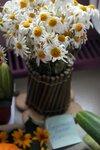выставка цветов