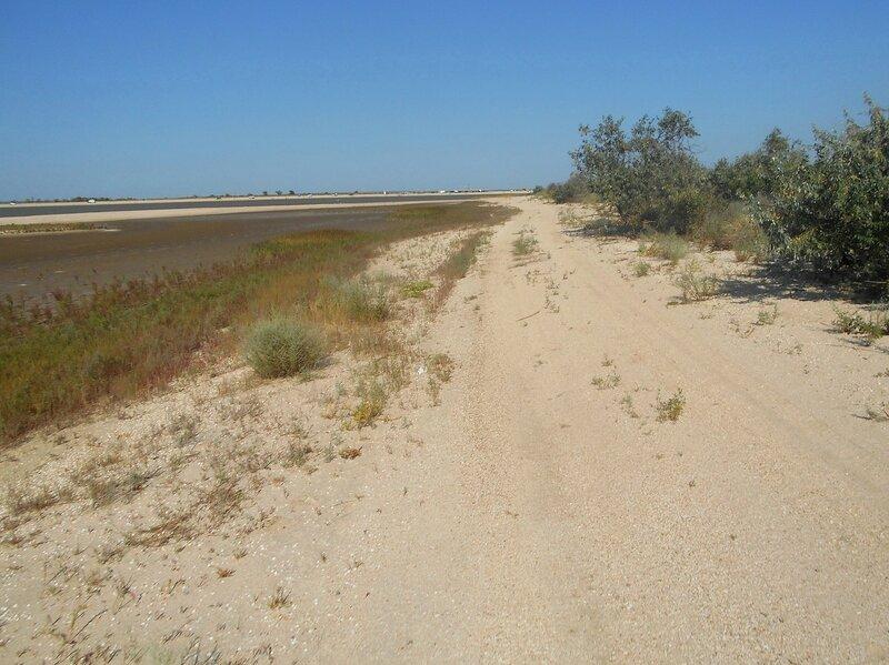 Дорога у пролива ... DSCN4260.JPG