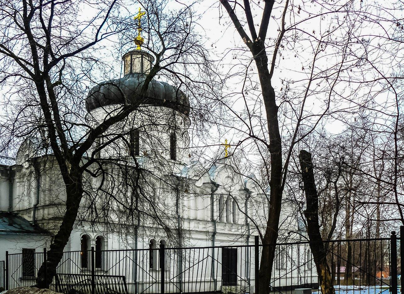 irina-fortuna-alekseevsky-monastery 02.jpg