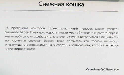 https://img-fotki.yandex.ru/get/767871/140132613.6d7/0_244aed_43911548_L.jpg