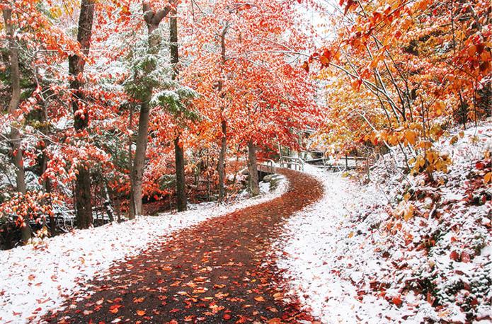 Между осенью и зимой (12 фото)