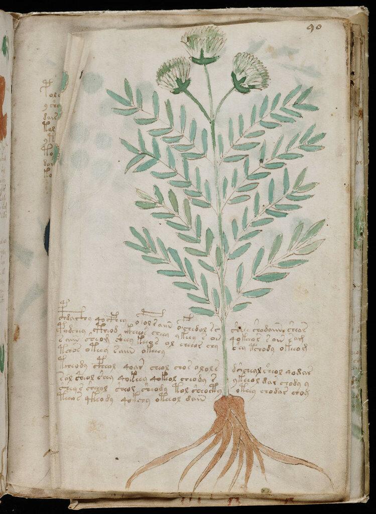manuscrito163.jpg
