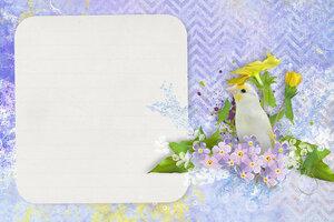 фиолетовые карточки