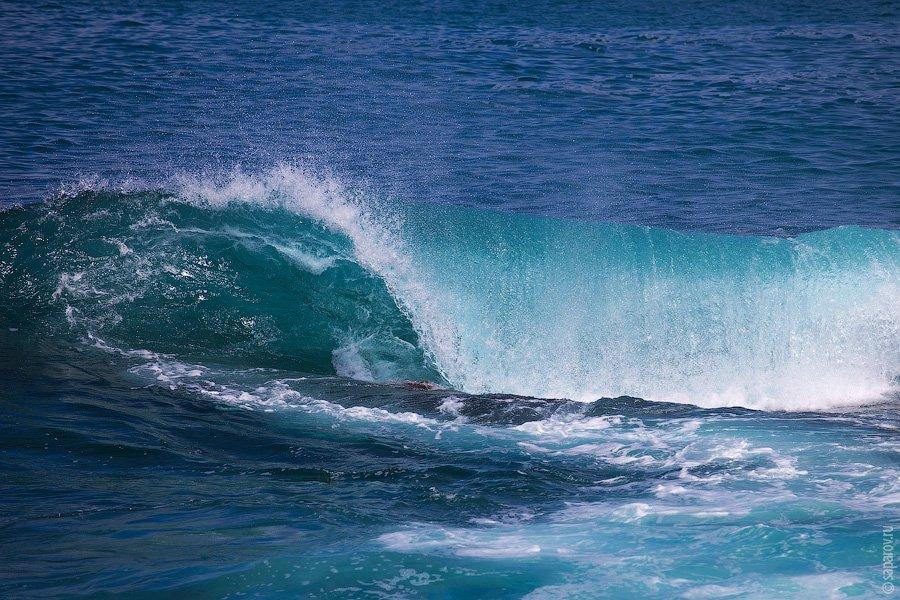 Остров Seymour Norte    Это место, которое однозначно стоит посетить. Оно расп
