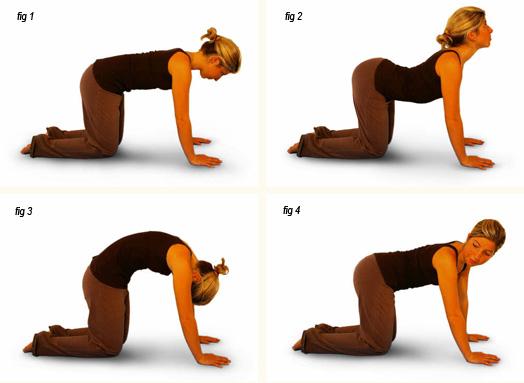 Станьте на колени, ладони прижмите к полу. Выгните спину и поднимите грудь. Почувствуйте, как растяг