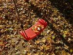5655.JPG Осеннее настроение.