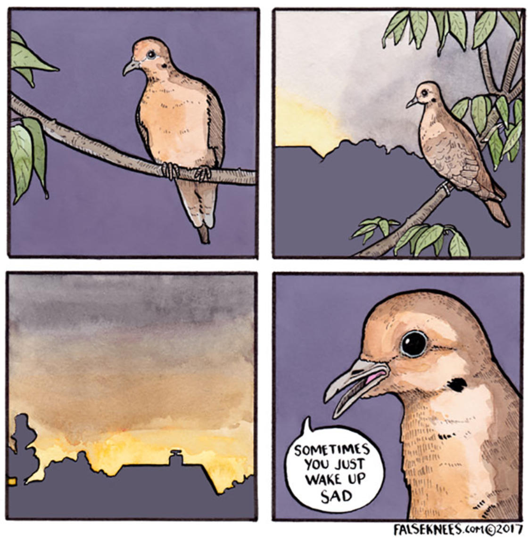 He reveals the secret life of animals in hilarious comics