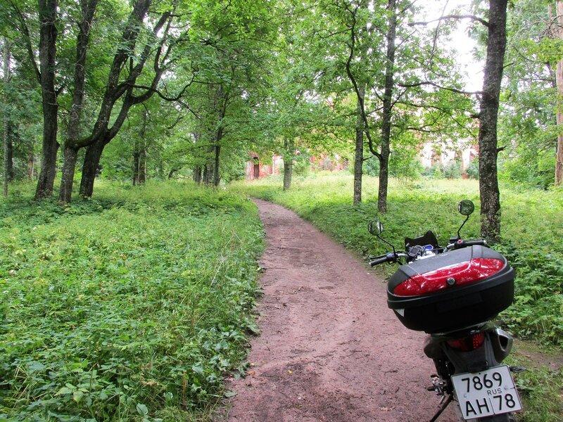 Парк при усадьбе Гостилицы.