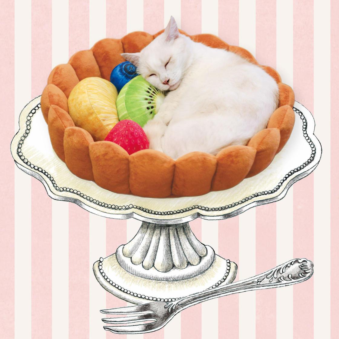 Cet accessoire japonais transforme votre chat en tarte aux fruits (8 pics)