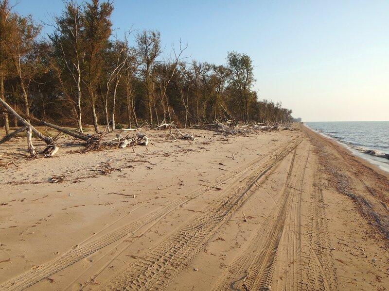 У лесов дремучих, на песках сыпучих ... 44. Фото из велокольца. Ахтари-Староминская-Бейсугский пролив (253).JPG