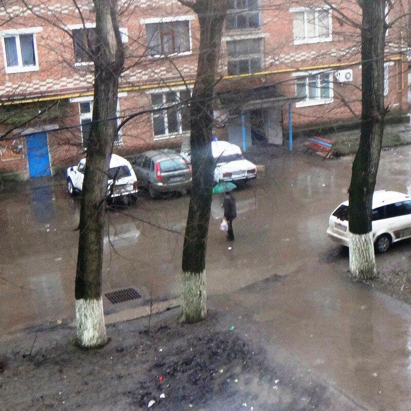 Январь дождём наполнил быт ... DSC03829 01.JPG