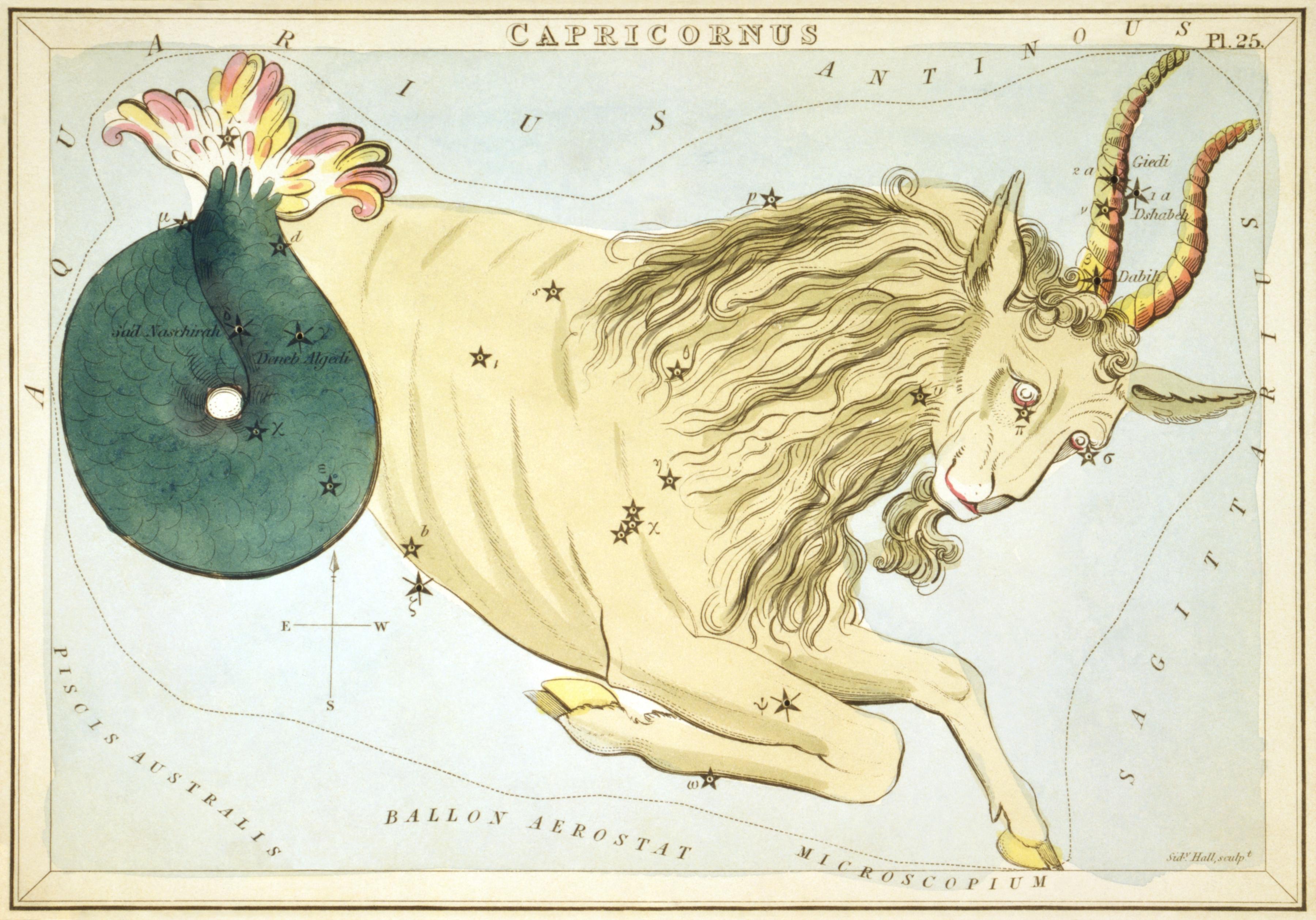 Карточка №25: Козерог (созвездие)