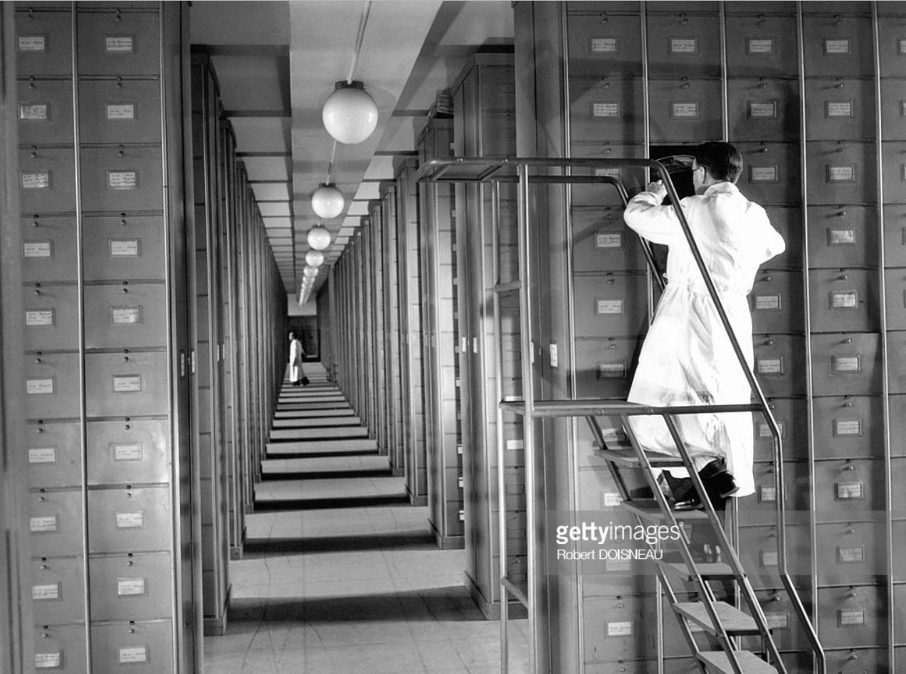 1943. Национальный музей естествознания. Ботаническая галерея. Государственный Гербарий