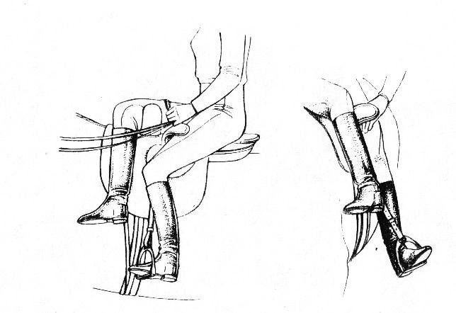 Положение-ног-всадницы-в-дамском-седле.jpg