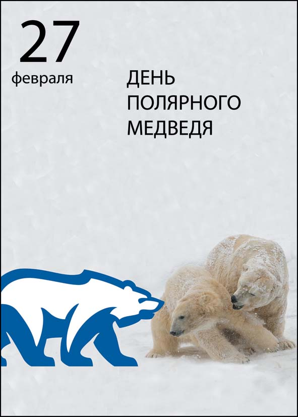 День полярного медведя. Уже трое