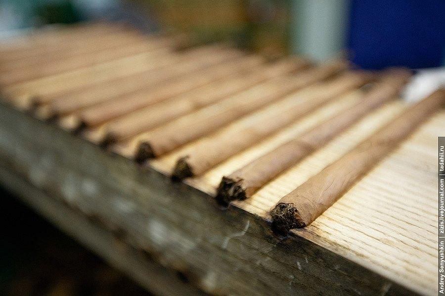 Последний этап рождения сигары: она попадает на стол к торсидору. Набор инструментов немудрен