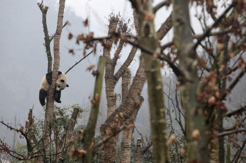 18. (Фото Reuters):