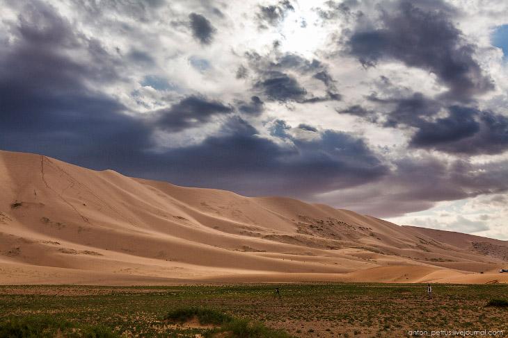 Буря в пустыне (11 фото)