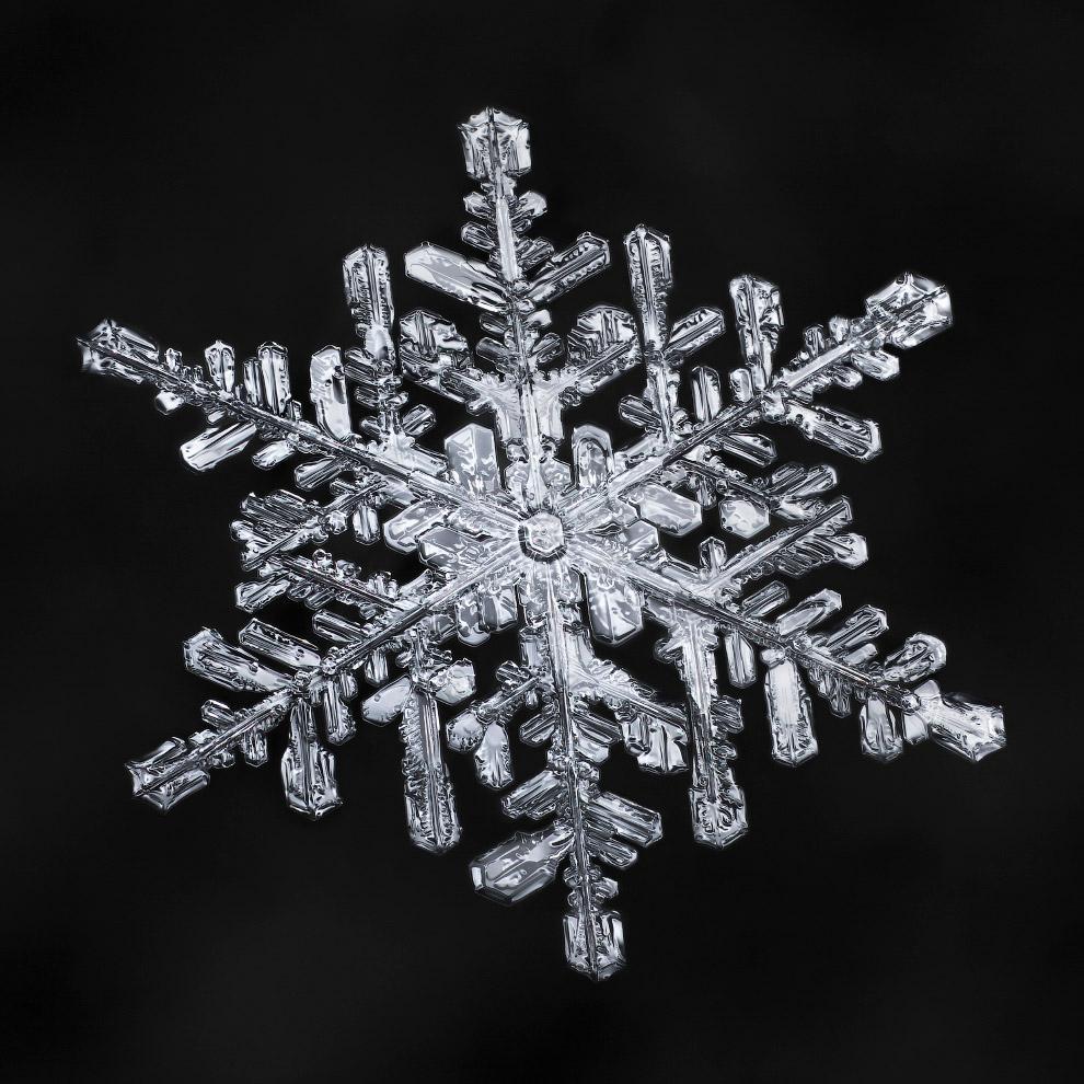4. Симметрия снежинки. (Фото Don Komarechka):