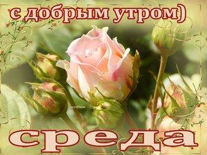 https://img-fotki.yandex.ru/get/768433/131884990.f3/0_160bd7_d7891729_M.jpg