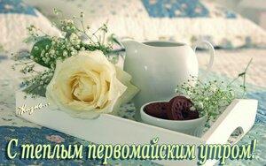 https://img-fotki.yandex.ru/get/768433/131884990.fd/0_166490_1a15aa59_M.jpg