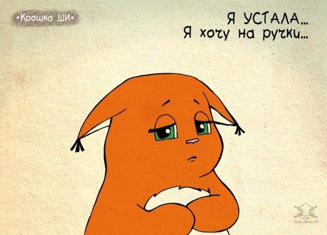 0 18006c b732b996 orig - Крошка Ши  Леси Гусевой