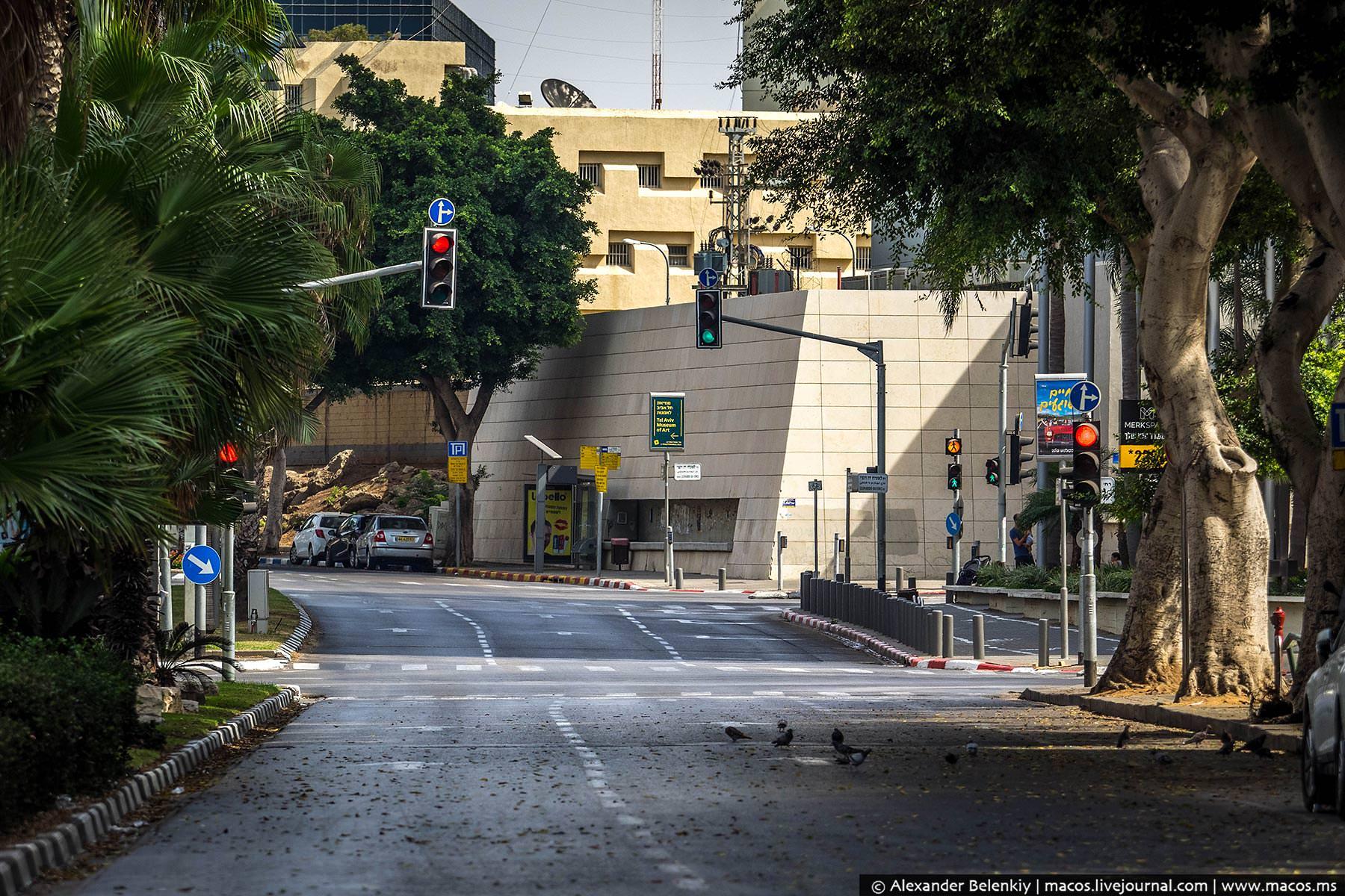 Светофоры работают, голуби срут на асфальт… Люди, вы где?