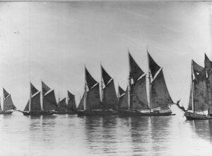 Яхты клуба на старте