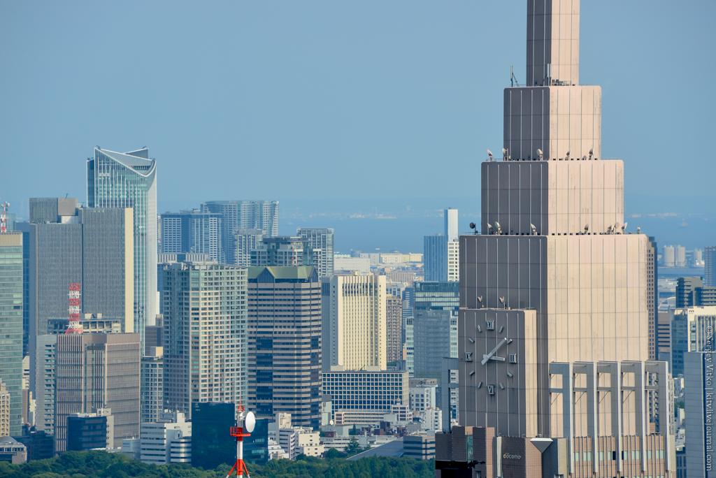 ТОП обзорных площадок Токио