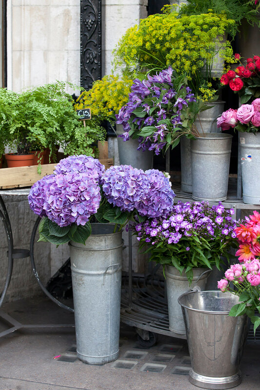 the Blue hydrangeas, as well as pale white lilies for sale at the entrance to the flower shop