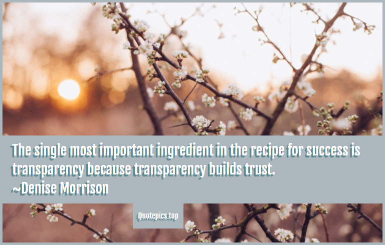 The single most important ingredient in the recipe for success is transparency because transparency builds trust. ~Denise Morrison