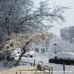 Продолжаем публиковать фото снегопада в Солнцево, это улица Авиаторов