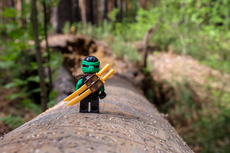 человечек lego на бревне в лесу, разгуляевский парк