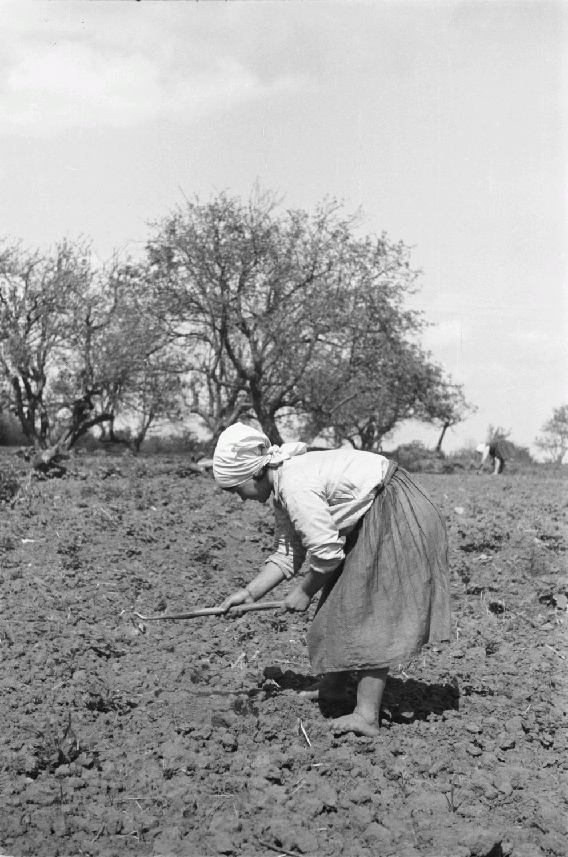 Молодая крестьянка на поле