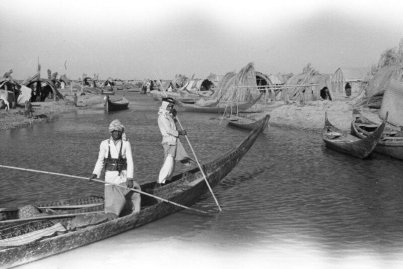 Thesiger-Marsh-Arabs-1950-Pitt-Rivers-Museum-2004-130-29267-1.jpg