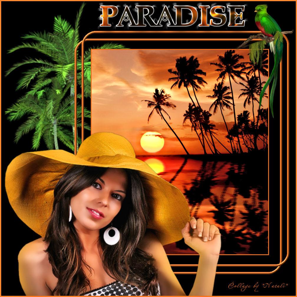 28.07.2017 PARADISE.jpg