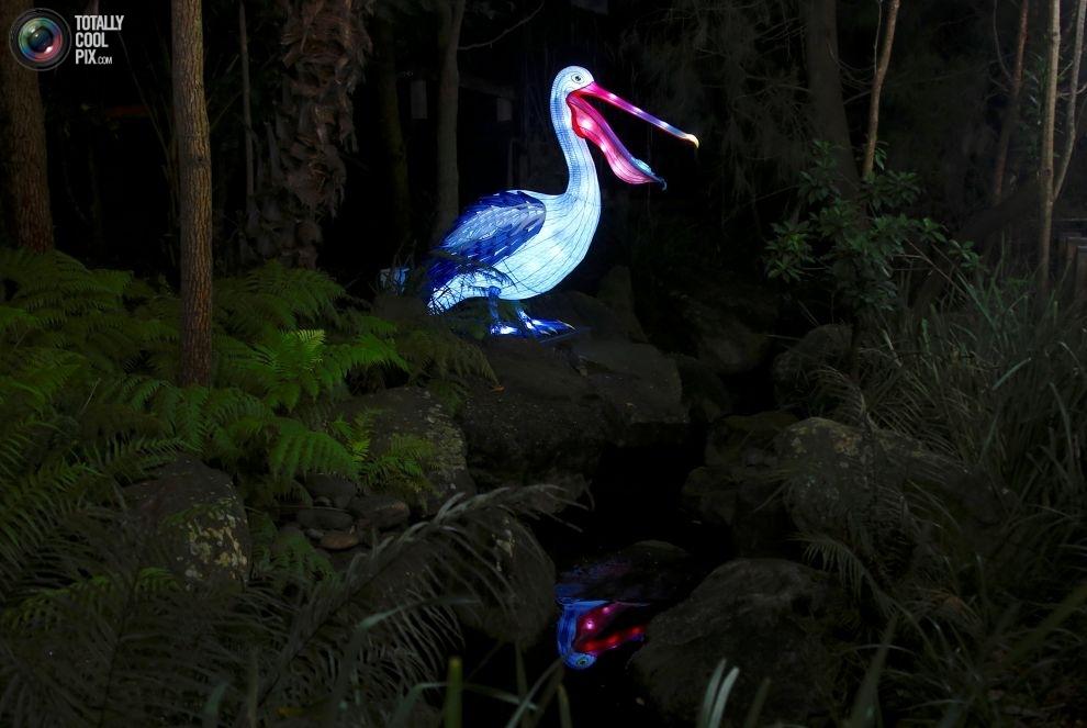Скульптуры Зоопарка Таронга, изображающие находящихся под угрозой исчезновения животных: пеликан.