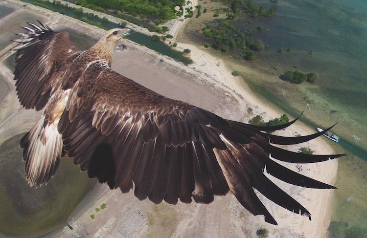 Лучшие аэрофотоснимки платформы Dronestagram в новой книге фотографий (11 фото)