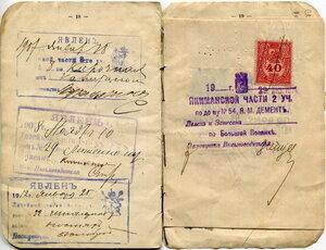 Паспортная книжка 0100